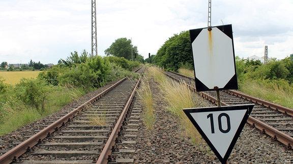 Rostige Gleise, umgeben von Bäumen und Sträuchern, führen zum Horizont, im Vordergrund ein Schild, das auf Tempo 100 hinweist