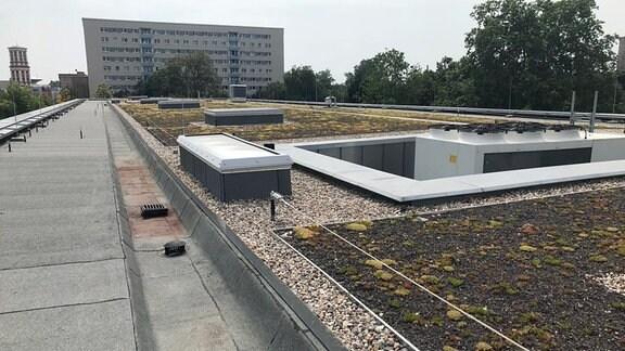 Blick auf das Dach des Bauhaus-Museums in Dessau