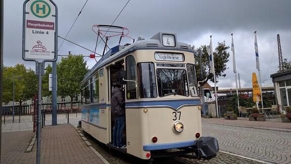 Eine Straßenbahn der Linie 4, die Wilde Zicke, steht an einer Haltestelle in Naumburg
