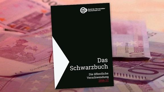 Grafik: Das Cover des  Schwarzbuches Öffentliche Verschwendung des Bund der Steuerzahler, BdSt