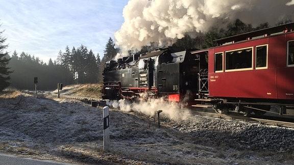 Die Harzer Schmalspurbahn.