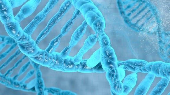 Blaue Doppelhelix