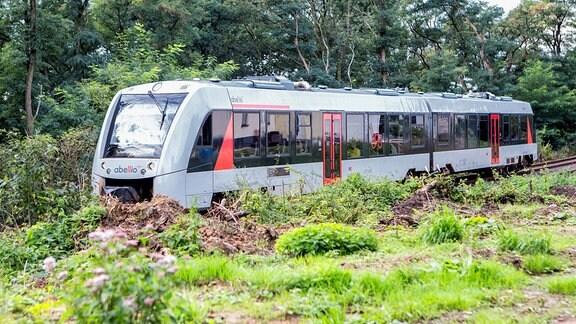 Die S7 Der Müngstener , Alstom Coradia LINT 41, von Abellio auf freier Strecke zwischen Solingen Hauptbahnhof und Solingen Mitte