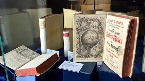 Historische Bücher in einer Glasvitrine im Schloss Wernigerode.
