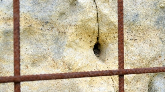 In einer Wand ist ein Loch, nachdem ein Gitter herausgerissen wurde.