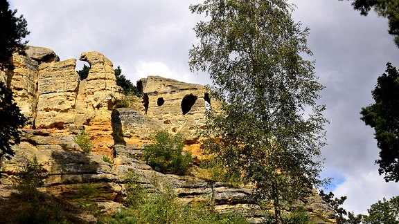Der Klusfelsen bei Halberstadt ist eine Sandsteinformation: 100 Meter lang und 15 Meter hoch.
