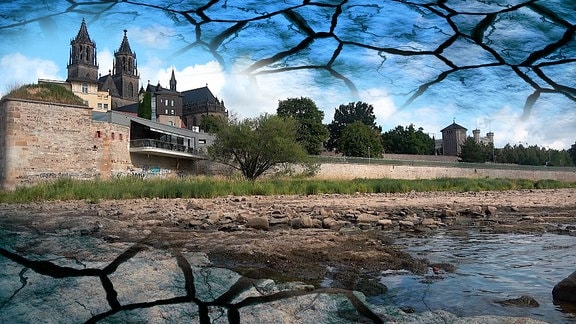 Collage: Freigelegter Domfelsen und Dom in Magdeburg und ausgetrockneter Boden