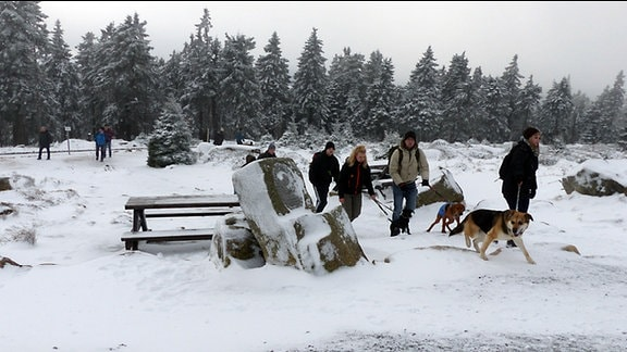 Spaziergänger im Schnee mit Hund