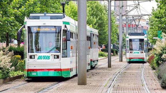 Straßenbahnen fahren durch den Breiten Weg in Magdeburg.
