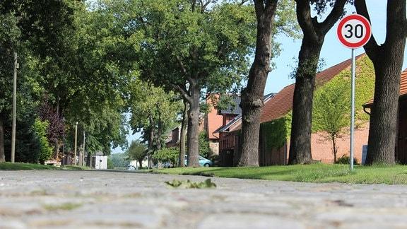 Dorfstraße mit alten Pflastersteine gesäumt von Bäumen