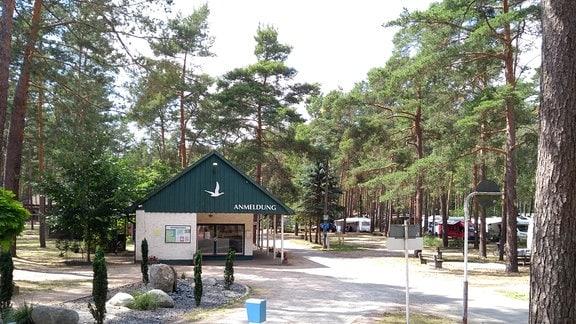 """Blick auf einen Campingplatz in einem Nadelwald - auf einem Gebäude steht """"Anmeldung"""""""