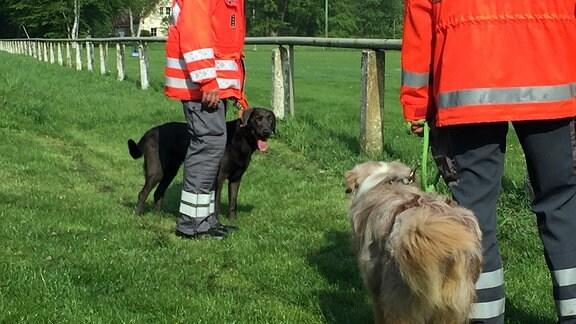 Zwei Hunde und ihre Halter stehen sich gegenüber