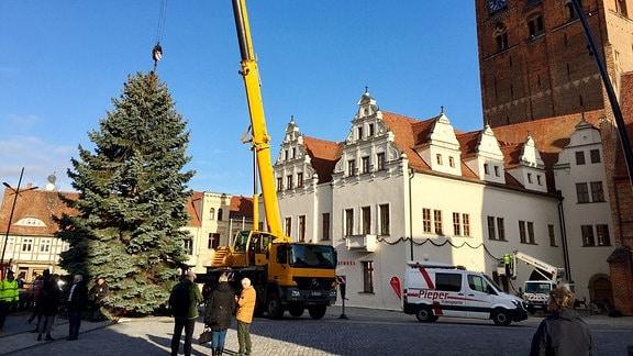 Schaulustige beobachten Aufbau des Weihnachtsbaumes auf dem Stendaler Marktplatz.