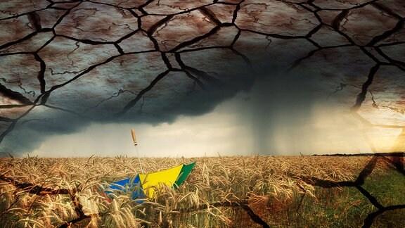 Collage: Bunter Regenschirm im Getreidefeld bei aufziehendem Gewitter und ausgetrockneter Boden