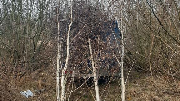 Hähnchengrillwagen im Gebüsch