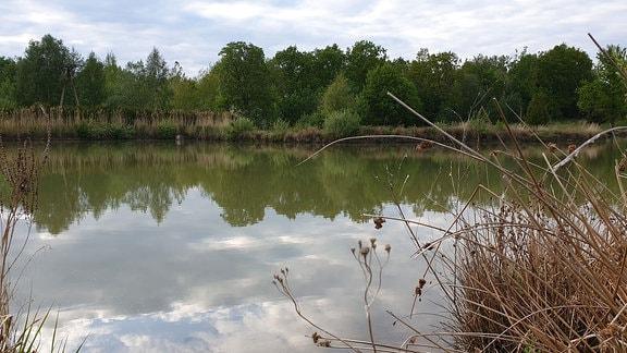 Fischteich unweit von Görlitz
