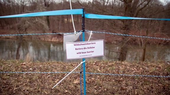 """An einem mobilen blauen Elektronetzzaun hängt ein Schild mit der Aufschrift """"Wildschweinbarriere"""" in deutscher, polnischer und englischer Sprache"""