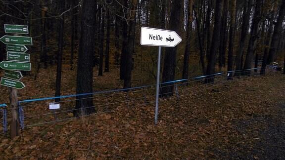 """Hinter einem Wegweiser mit der Aufschrift """"Neiße"""" steht ein blauer Elektronetzzaun entlang eines Waldwegs"""