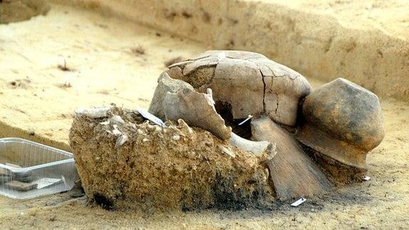 Urnengrab aus der Bronzezeit mit Knochenresten