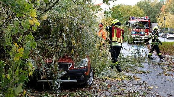 Feuerwehrleute räumen Äste von Auto