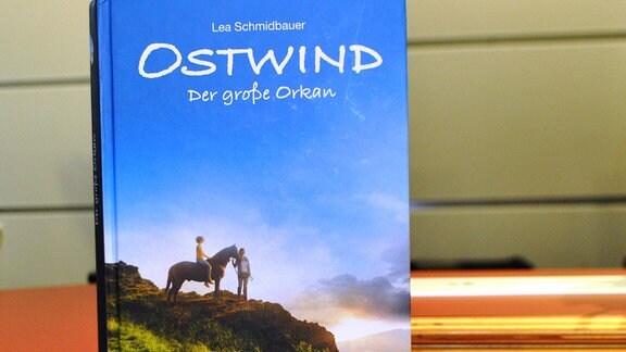 """Ein Buch mit der Aufschrift """"Ostwind - Der große Orkan"""""""