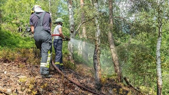 Zwei Feuerwehrleute löschen einen Brand in einem Waldgebiet