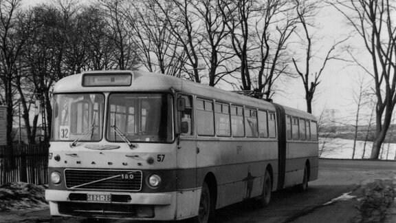 Ein Ikarus-Gelenkbus der Baureihe 180 an einer Haltestelle in Chemnitz.