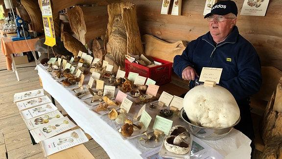 Pilzberater hinter seinem Stand mit verschiedensten Pilzsorten