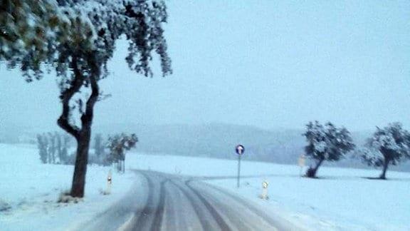 Schneebedeckte Straße aus Auto bei Blankenhain