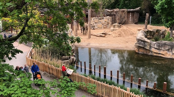 Besucher im Außengelände des Zoos Dresden