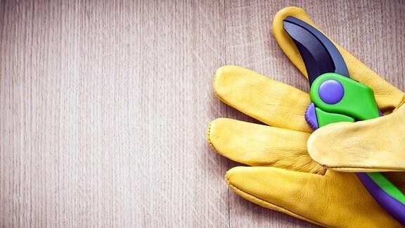 Gelb Schutzhandschuh mit eine Gartenschere liegen auf einem Holztisch.