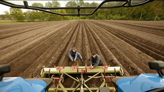 Landwirtschaftliche Arbeiten auf einem Feld