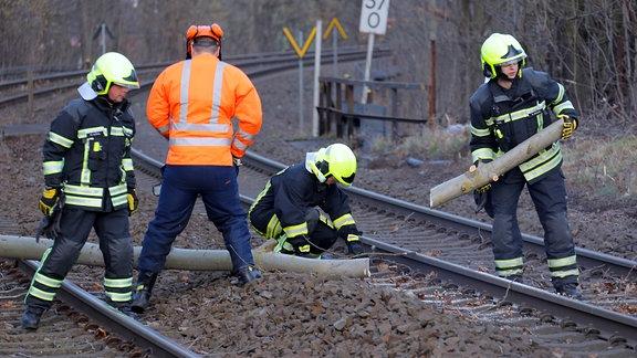Feuerwehrmänner auf Bahngleisen zersägen umbestürztem Baum