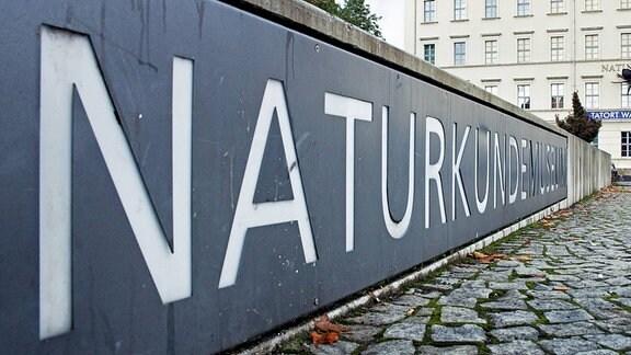 Das Naturkundemuseum in Leipzig.