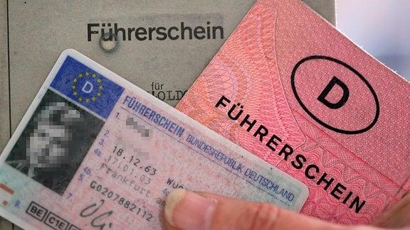 Verschiedene Führerscheine
