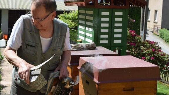 Imker Rolf Schülbe schaut nach seinen Bienenvölkern.