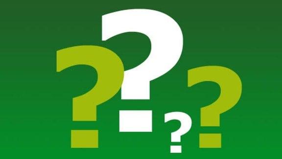 Vier Fragezeichen