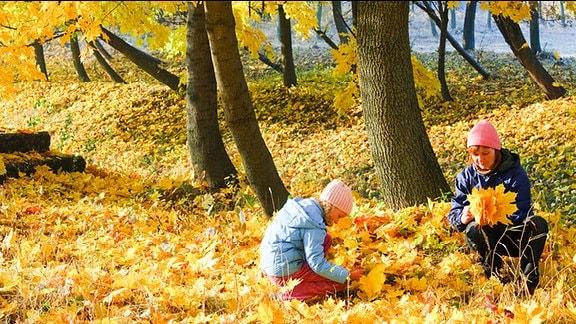 Herbststimmung - Zwei Menschen sitzen im Gras und sammeln runter gefallene Blätter.