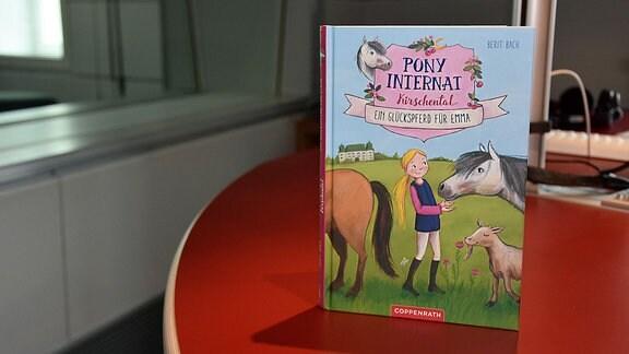 Das Buchcover zeigt ein Mädchen mit drei Pferden.