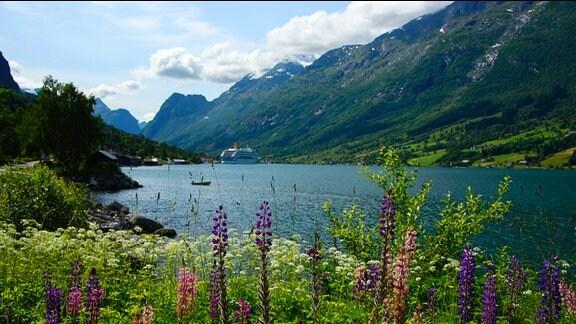 Ein Fjord in Norwegen.