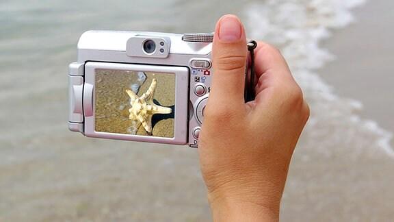 Eine Frauenhand hält eine Digitalkamera.
