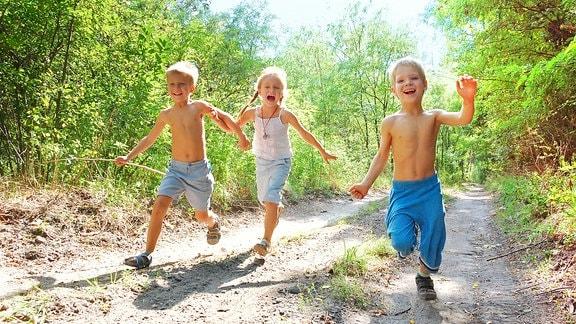 Drei Kinder laufen auf einem Waldweg