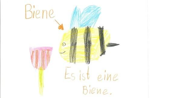 Ein Bild gemalt von Luisa: eine Biene.