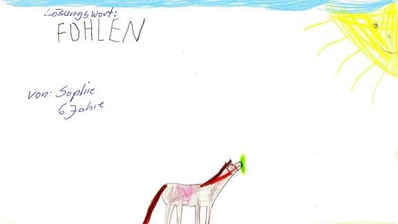 Ein Bild gemalt von Sophie: ein Fohlen sthet auf einer Wiese in der Sonne.
