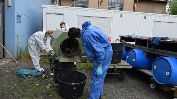 Studenten am Institut für Ablauf- und Kreislaufwirtschaft in Pirna trennen Müll