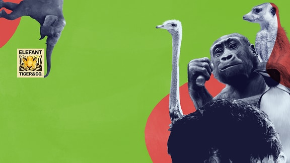 Podcast Elefant Tiger und Co