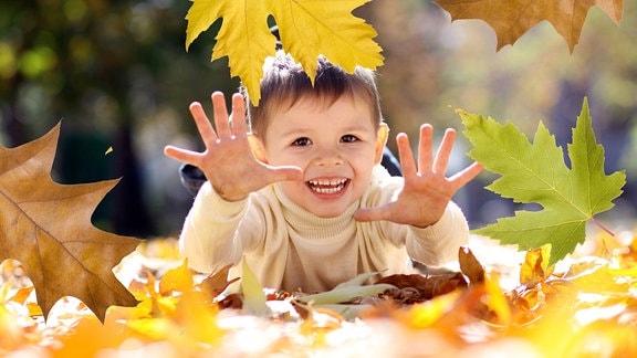 Fünfjähriges Kind liegt auf Herbstlaub