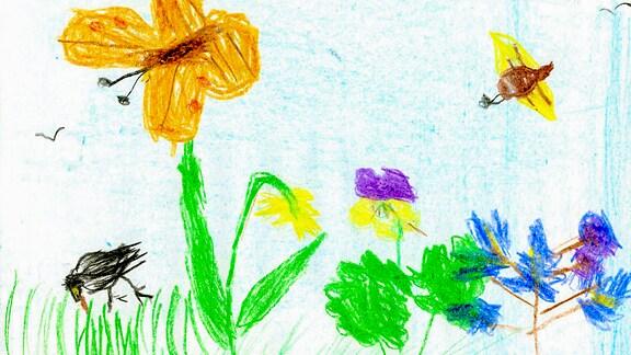 03.08. | Eine Kinderzeichnung von Frieda (5) aus Hochstadt am Main