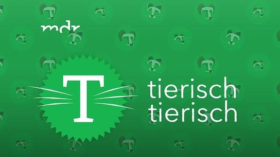 Tierisch tierisch - Logo