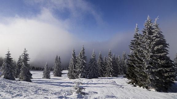 Eine Zauberlandschaft aus Eis und Schnee: Das Riesengebirge. Hier entspringt die Elbe. Sie durchfließt Tschechien und Deutschland und mündet nach 1100 Kilometern bei Cuxhaven in die Nordsee.
